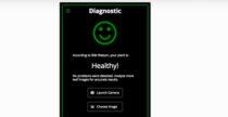 Plantbot, l'app che fa la diagnosi alle piante