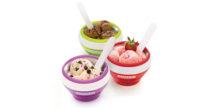 Zoku Ice Cream Bowl