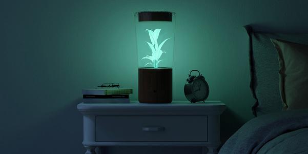 lampada-lume