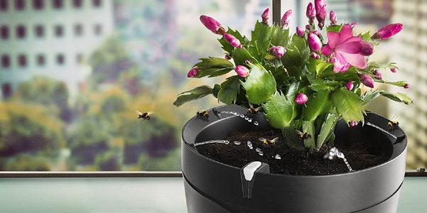 Parrot Pot, il vaso che si annaffia da solo