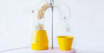 Popcorn Monsoon, una vera pioggia di popcorn